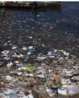Plastic waste causing $13bn in damage: UN - News24 | Waste | Scoop.it