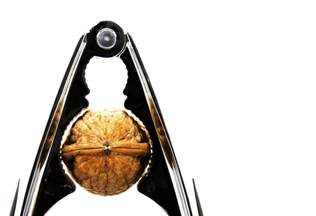 Walnuts may shrink prostate cancer risk - Futurity | Science | Scoop.it