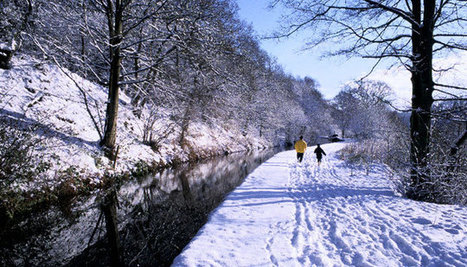 Canal & River Trust :: Become a Friend this Christmas | Canal Vines | Scoop.it