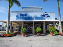 Miami Seaquarium - how has this been allowed to spiral into such decay?   #OrcaAvengers   Scoop.it