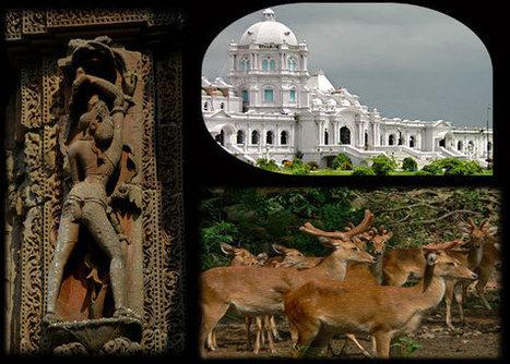 India Tour Packages   Domestic India Tours   India Tourism :- Balaji Tour Travel Luxury Deals   balajitourtravel   Scoop.it
