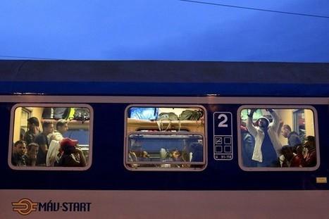 L'Allemagne, débordée, réintroduit des contrôles frontaliers | Pauline CURTET et Ralf ISERMAN | Crise migratoire | diversité | Scoop.it