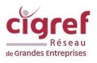 Le Cigref se dote d'un réseau social   François MAGNAN  Formateur Consultant   Scoop.it