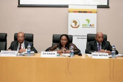 NEPAD Agency on Twitter   NEPAD CAADP: Agriculture, Food Security and Nutrition in Africa   Scoop.it