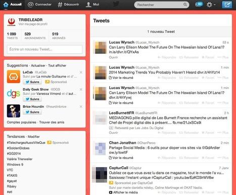 Le guide Twitter pour les entreprises [Infographie] | Management et promotion | Scoop.it