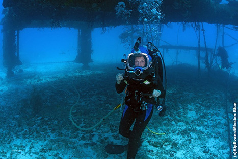 Sylvia Earle has spent almost a year of her life under water - Grist | Undersea Exploration | Scoop.it