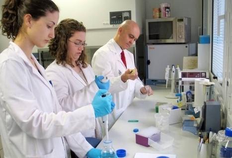 Un compuesto del aceite de oliva virgen previene la inflamación crónica asociada a tumores — Noticias de la Ciencia y la Tecnología (Amazings®  / NCYT®) | LOS 40 SON NUESTROS | Scoop.it