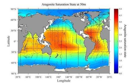 New research maps areas most vulnerable to ocean acidification - Phys.Org | Marine Protection | Scoop.it