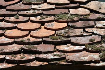 Anti mousse pour toiture le fil de cuivre br for Bande cuivre anti mousse