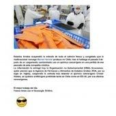 Calidad en la industria salmonera   alimentos   Scoop.it
