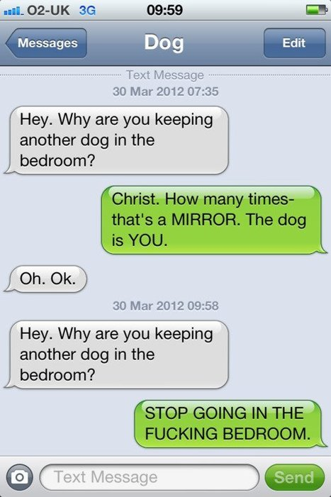 Text from dog | Tumblr.com | au cul du c@mion | Scoop.it