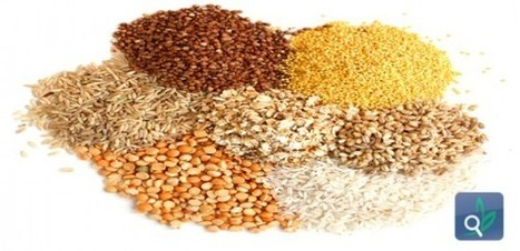 دليلك الصحي للحبوب الكاملة .. - تغذية | تغذية | Scoop.it