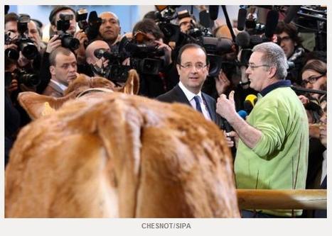 Salon de l'Agriculture: c'est pas la kermesse à Findus ! | Econopoli | Scoop.it