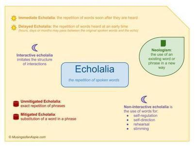 Echolalia: That's What She Said | Educating Diverse Learners | Scoop.it