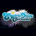 Electric Daisy Carnival Las Vegas (EDC) 2013 Guide...Tickets On Sale NOW... | ...Music Festival News | Scoop.it