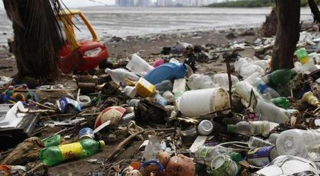 Comment la pollution humaine fait du plastique un nouveau type de roche   Toxique, soyons vigilant !   Scoop.it
