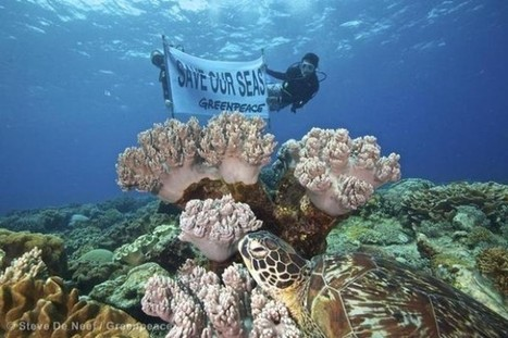 #IPCC's global warning means it's time to get serious about #protecting our #Oceans ~ #GreenpeaceUK | The natural world | Scoop.it