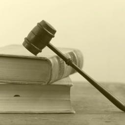 RCA : Solide contribution pour la nouvelle constitution, avec suppression du Premier ministre | Centrafrique | Scoop.it