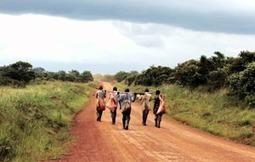 L'Agrobusiness, un pavé vers la dépendance alimentaire en Afrique | Questions de développement ... | Scoop.it