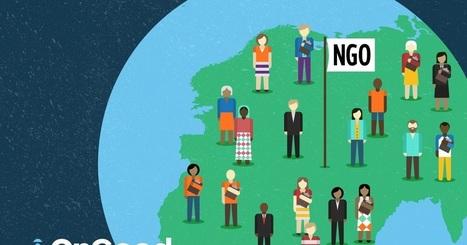 ONG-Entreprises : Le choc des valeurs: Quelques chiffres pour visualiser le poids des ONG   Innovations sociétales, RSE, Philanthropie   Scoop.it