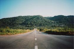 Long road..... | LOMO | Scoop.it