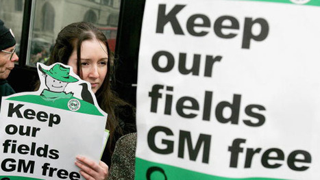 Owen Paterson backs GM food, saying fears are 'humbug' - The Week UK | Vertical Farm - Food Factory | Scoop.it
