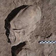 Los cráneos alargados de México | SEBAS PCPI | Scoop.it