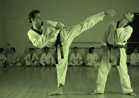 Defend yourself by learning Taekwondo techniques online | Martial Arts Web Design | Scoop.it