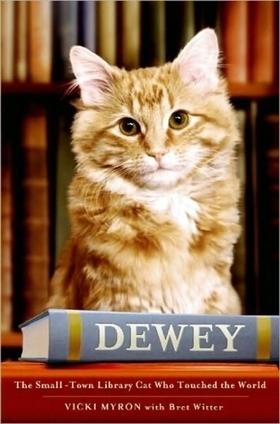 Meryl Streep et le chat bibliothécaire   bib en séries   Scoop.it