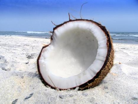 Health Benefits of Coconut Oil | Earth Citizens Perspective | Scoop.it