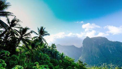 Papouasie, expédition au coeur d'un monde perdu | ARTE | agriculture | Scoop.it