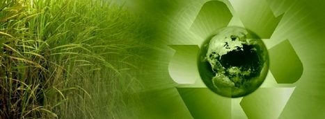 µ-BioRefinery™ | Biorenewable Chemicals & Energy | Scoop.it
