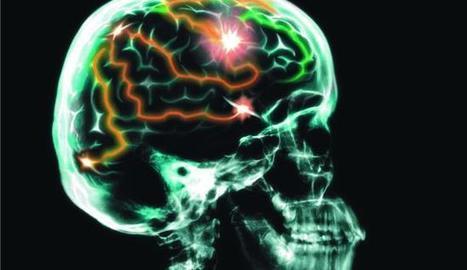 Once claves para cuidar la salud cerebral - Faro de Vigo | Ocio y Salud | Scoop.it