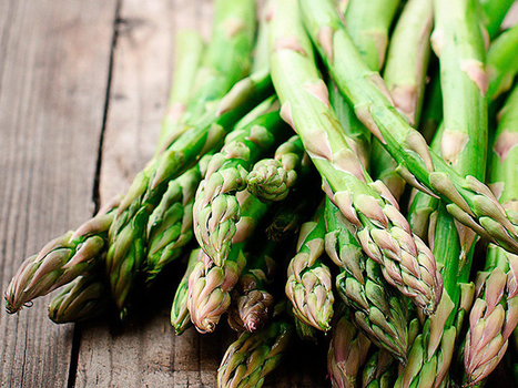 19 Prebiotic Foods That Should Be a Part of a Healthy Diet | zestful living | Scoop.it