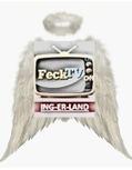 the flying feck logo