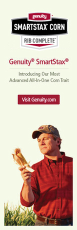 Monsanto | Corn Seeds | American society's effect on North American corn | Scoop.it