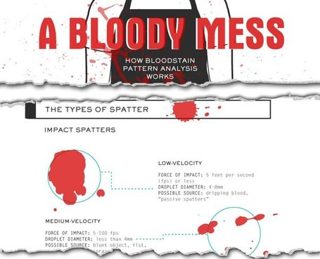 CSI Knowledge: How Bloodstain Pattern Analysis Works (Infographic) : Discovery Channel | Infographic Soup | Scoop.it