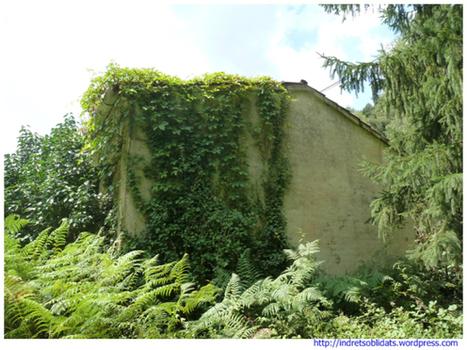 Les antigues escoles de Lliors | La Selva 2.0 | Scoop.it