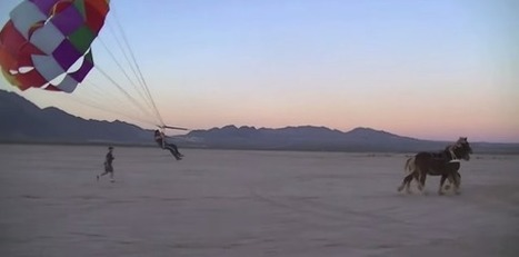 Le parachute à cheval, nouvelle discipline officielle ? - Equidia & Vous | Equidés | Scoop.it