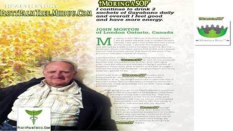 HEALTH STORY: JOHN MORTON Stage 4 Prostate Cancer A | MoringaSOP? What Is that | Scoop.it