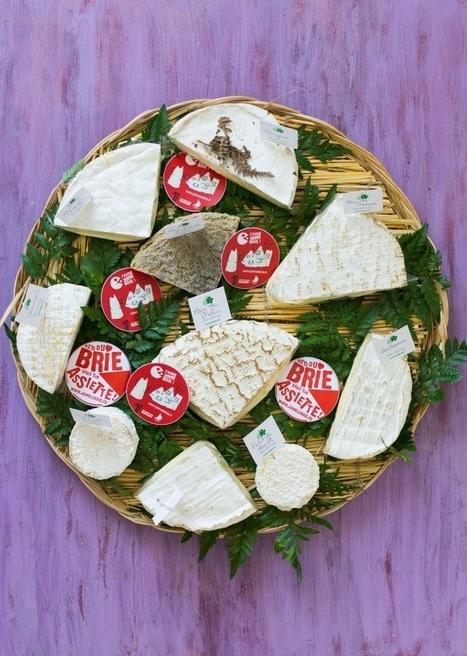 J'aime les fromages de Brie ! | StellA Cuisine !!! Recettes faciles, Recettes pas chères, Recettes rapides | Fête de la Gastronomie 23 au 25 sept. 2016 | Scoop.it