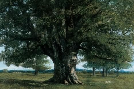 Le Chêne de Flagey de Gustave Courbet rentre au pays   Tout le web   Scoop.it