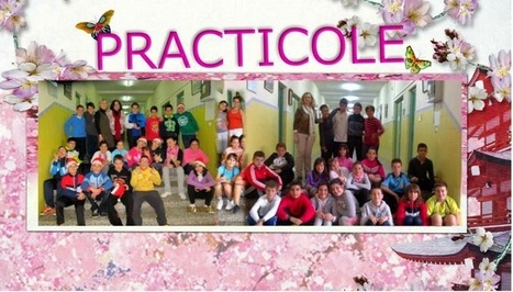PractiCole: MATEMÁTICAS, 6º PRIMARIA, TEMA 10. FIGURAS ... | Matemáticas de 6º de primaria | Scoop.it