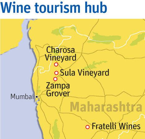 Why Maharashtra is India's wine tourism capital? | Vitabella Wine Daily Gossip | Scoop.it
