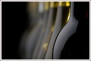 Wine Tasting and other activities in Le Marche   Wines and People   Scoop.it