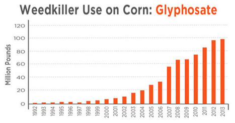 Atrazine and Glyphosate More Harmful Than Scientists Once Thought | sustainablity | Scoop.it