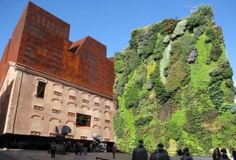 El jardín vertical   Cultivos Hidropónicos   Scoop.it