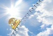 Bitcoin Price Hits $300 Amid Continuing Price Rally | [Bitinvest] Bitcoin News | Scoop.it