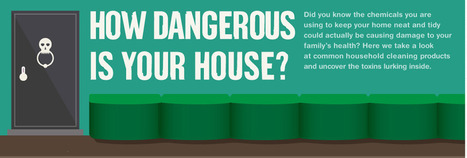 How dangerous is your house? : FactSpy.net - Learn something new everyday | Facts | Scoop.it