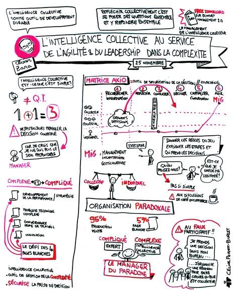 L'intelligence collective au service de l'agilité du leadership dans la complexité | Myvigie - Trust builder | Scoop.it